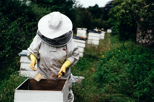 A protective suit for beekeepers